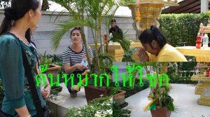 """คนไทย คนกัมพูชา แห่ตี""""เลขเด็ด""""ต้นหมากให้โชค"""