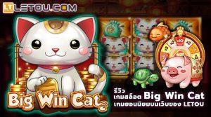รีวิว เกมสล็อต Big Win Cat บน Letou